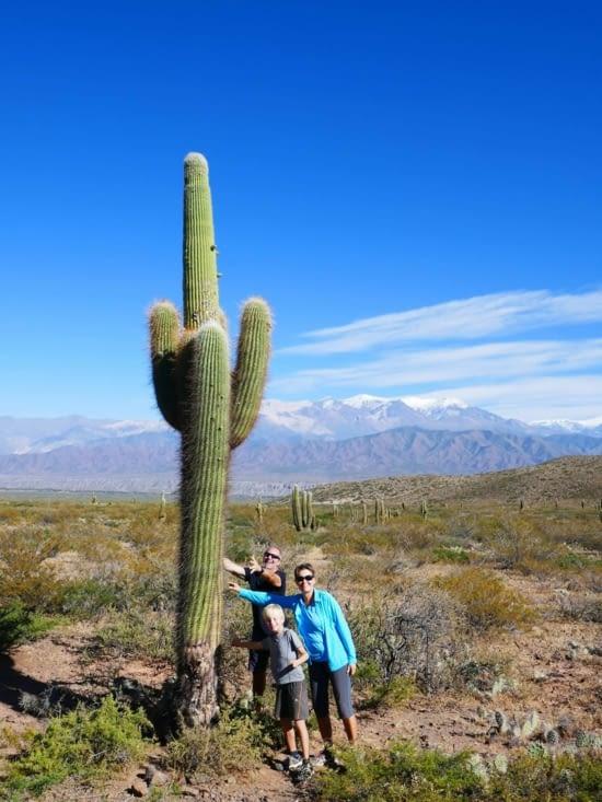 De gros bisous pour ce petit bébé cactus