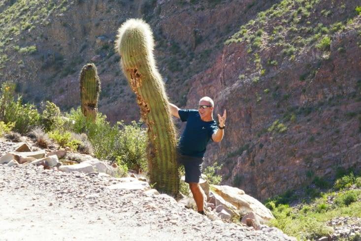 Superman qui dresse un cactus géant ! ...