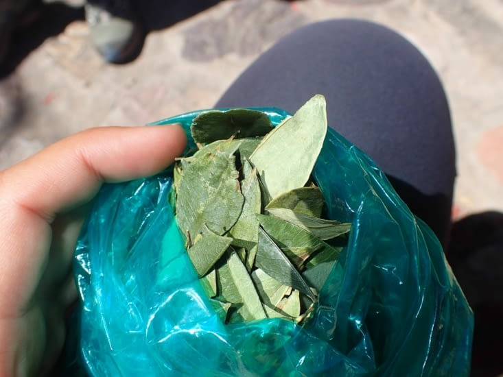 Ah mais je comprends mieux maintenant,  elle consomme des feuilles de coca....