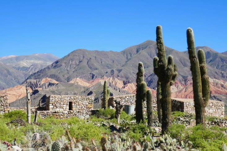 Cactus et pierres à l'infini: l'endroit idéal pour des vacances très tranquilles...