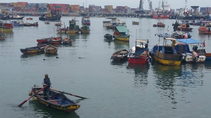 Nous découvrons une zone portuaire haute en couleurs et en surprises...