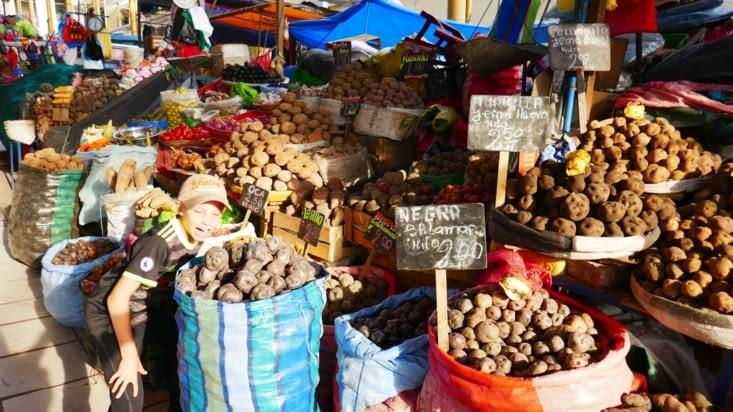 """Les stands """"patates"""" sont énormes car le Pérou est le berceau de la pomme de terre"""