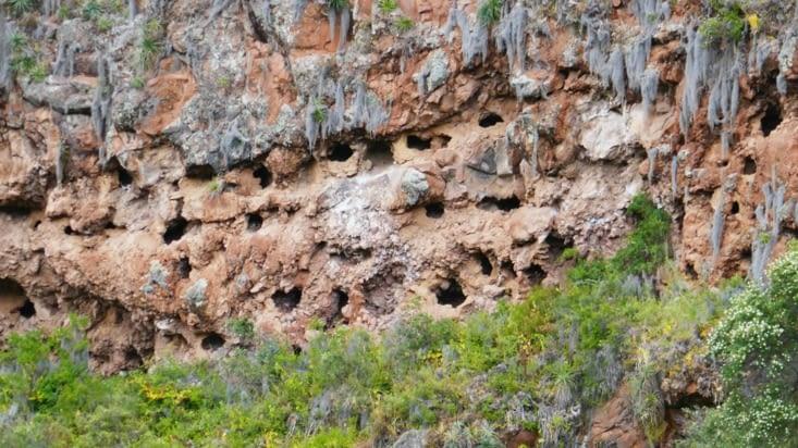 Ces trous dans la roche servaient de tombes !