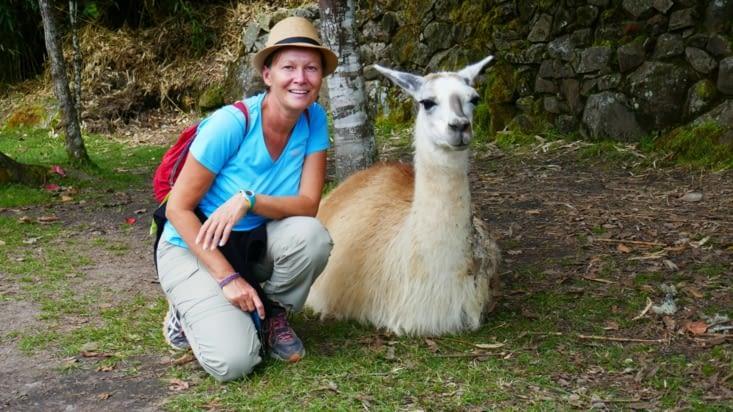 Panthère et Lama: même sourire.... aïe, aïe !