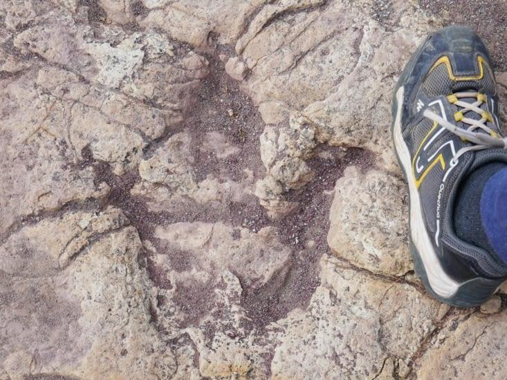 Une empreinte gravée dans la roche (à gauche. ..)