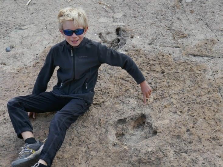 Et là, re-belote, de superbes traces de pas fossilisés de dinosaures. ..!