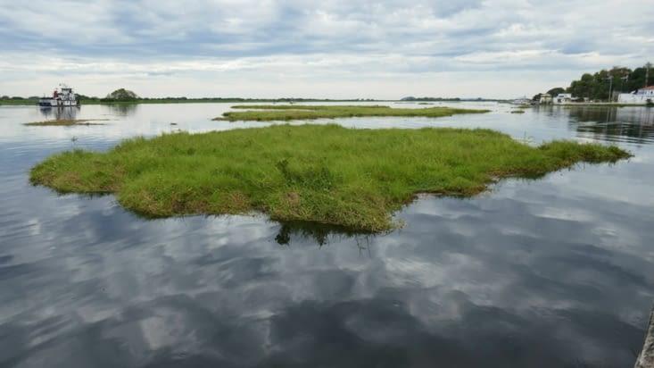 île flottante dérivant sur le fleuve