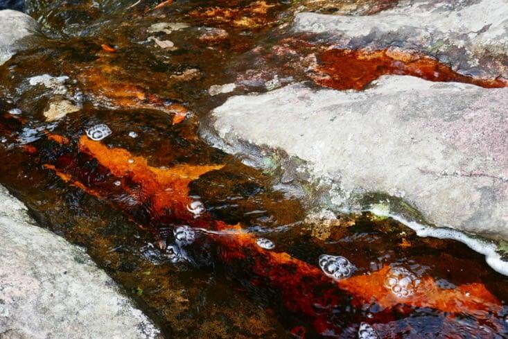 L'eau est transparente mais la roche est colorée par la présence de mineraux