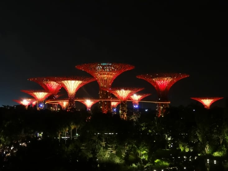 Garden by the bay by night
