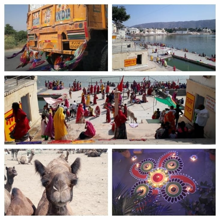 Pushkar : camel market, sadhu et fête des lumières