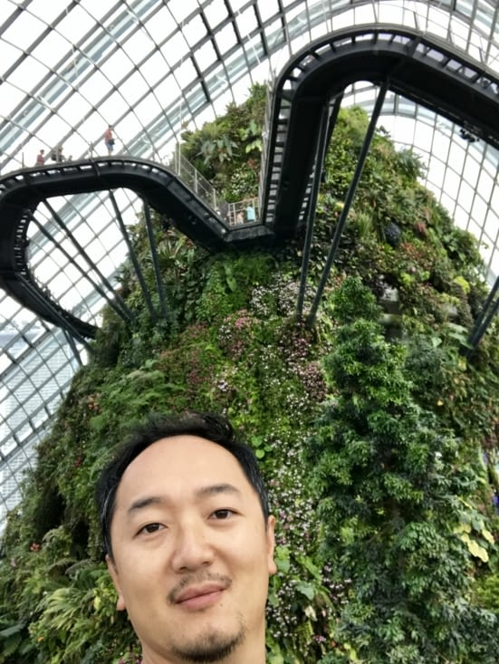 """Une vue """"Avatar-esque"""" dans le Cloud Forest"""