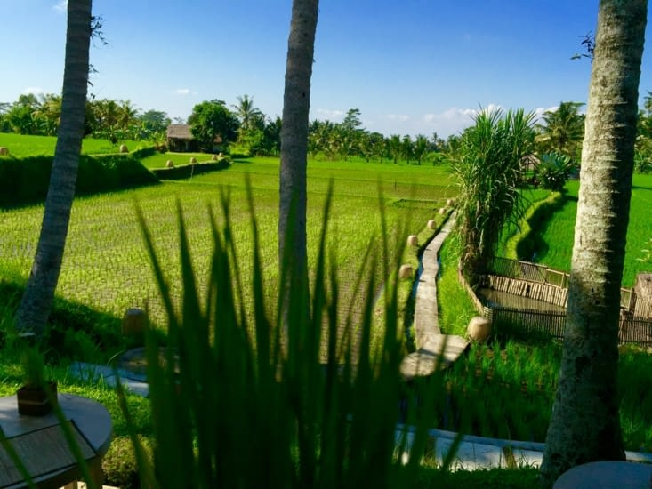 Mathis Retreat Hotel Ubud