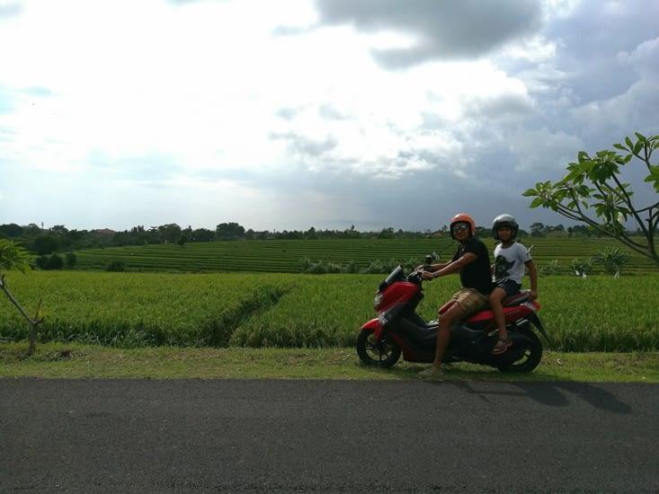 Devant nos champs de rizière