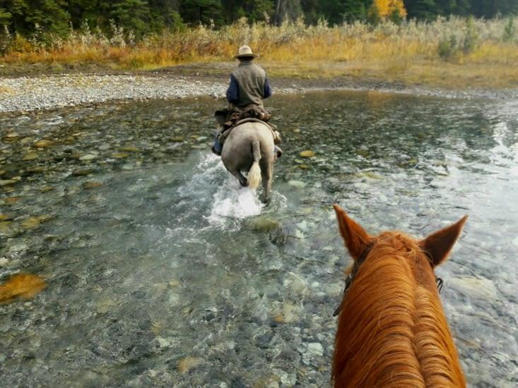 Le cheval, le cheval, le cheval c'est trop génial :)