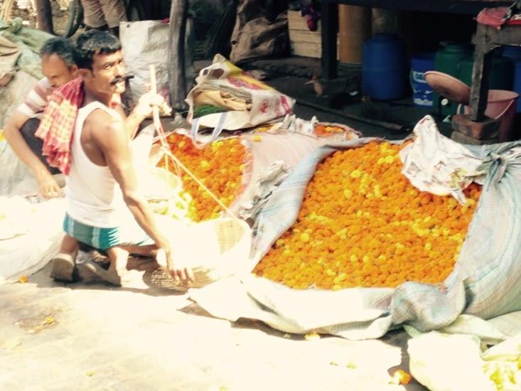 Marché aux fleurs de Mullik Ghat