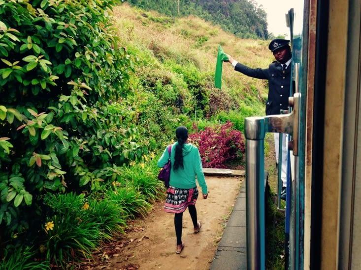 Un train au milieu de la forêt, portes ouvertes sur les plantations de thé