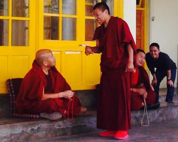 Les débats publics des moines tibétains : un grand moment !