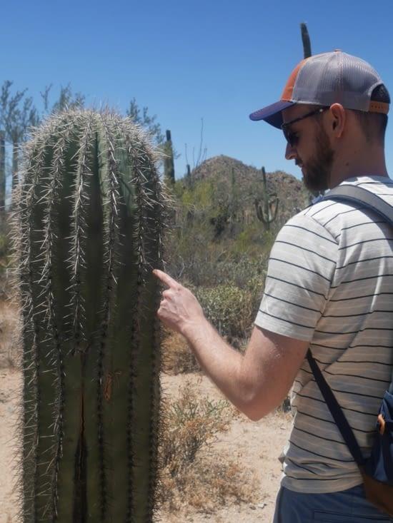 sites de rencontre gratuits à Tucson en Arizona en ligne gay rencontres conseils