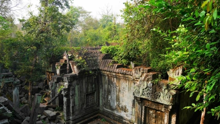 La végétation est omni-présente dans ce temple et c'est génial