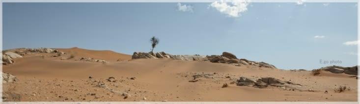 sable et roche, rien d'autre