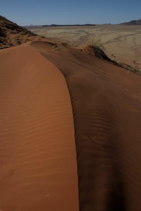 frissons de dune