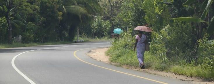 ombrelles de bord de route