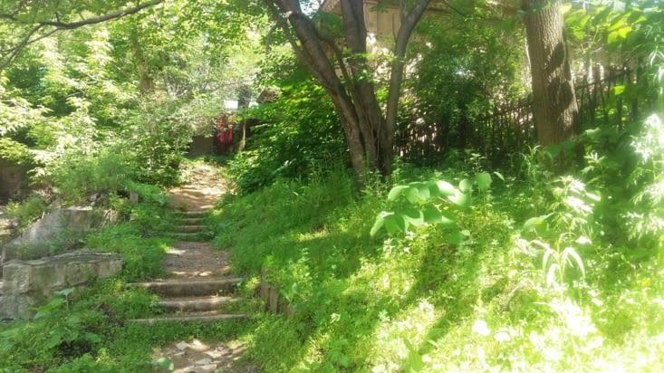 J`ai repris une dernière fois le petit chemin  ( tropinka) qui conduit a la maison de  Tamara.