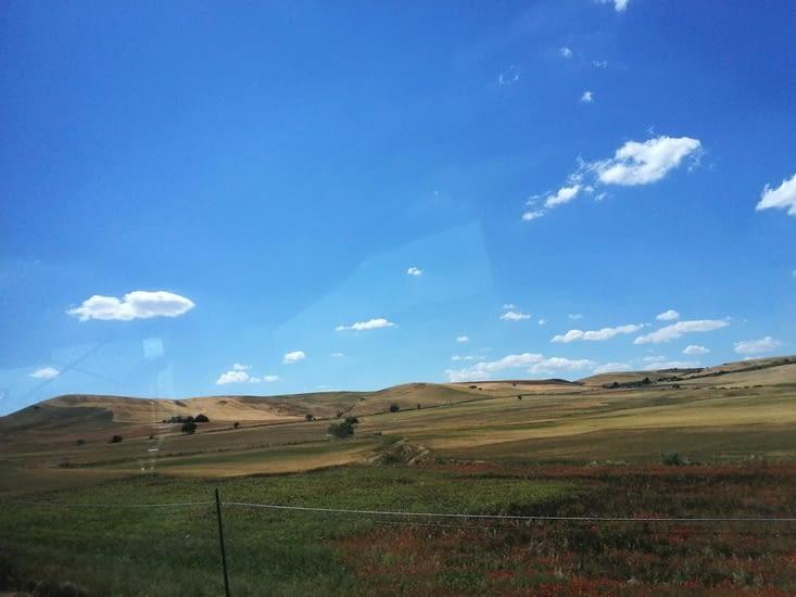 Puis des  champs de cereales