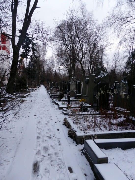 """""""Kladbiche """"Le cimetière de Novodevitchi"""