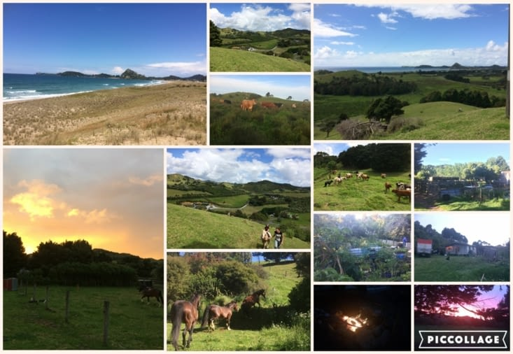 collage paysages en entier