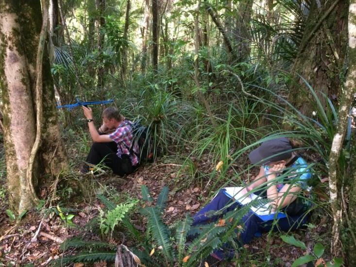 kiwi monitoring.... en attendant le signal
