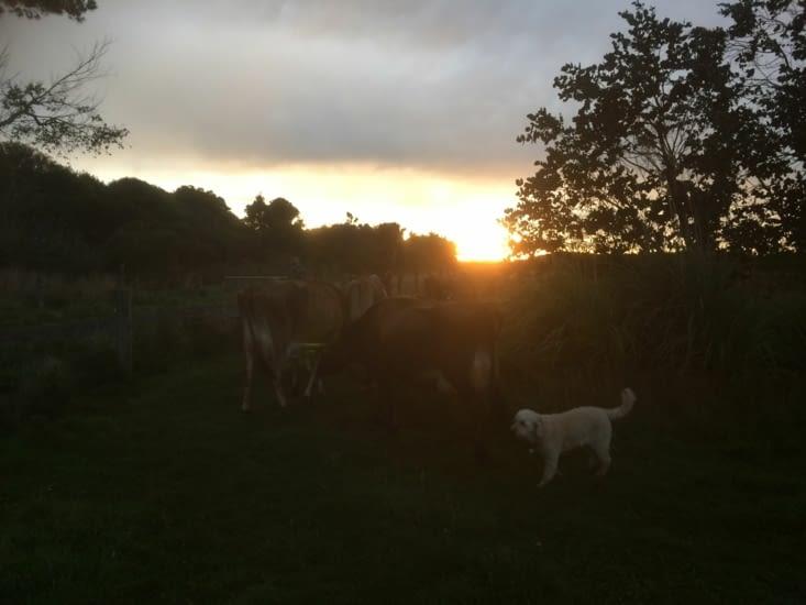 lever de soleil, le matin du départ
