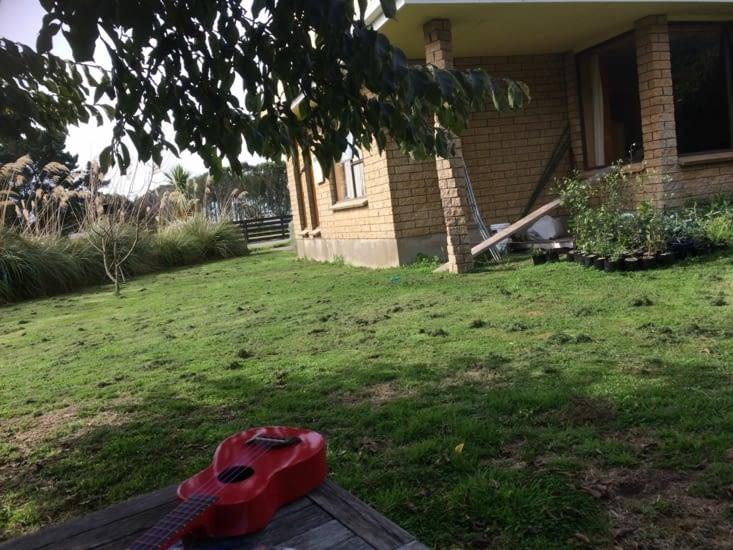 quand je joue du ukulélé dans le jardin