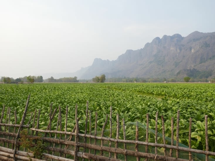 Village de Kong Lor