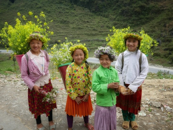 Hmong Fleur