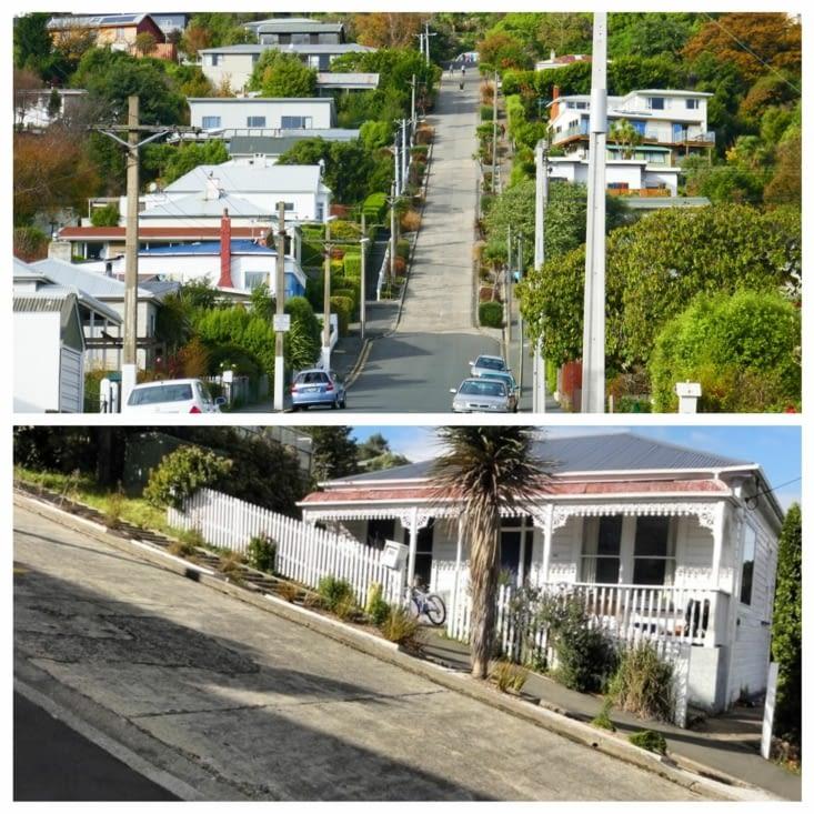 Dunedine et sa rue la plus pentue du monde