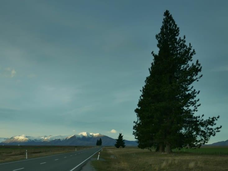 En route vers le lac pukaki