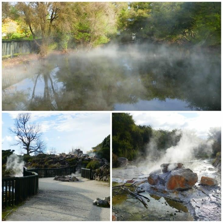 Rotorua, la ville qui sent l'oeuf pourri