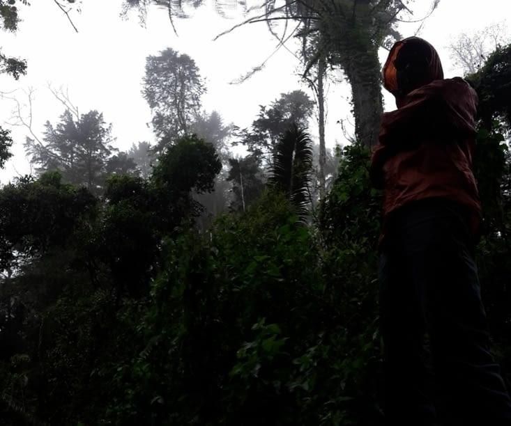 La randonnée sous la pluie