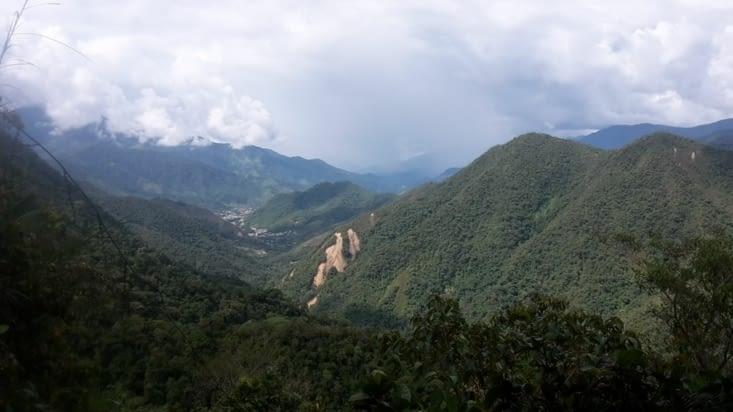 Le parc podocarpus vu du ciel