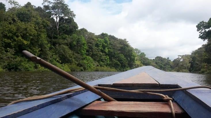 La pirogue sillonant la plénitude du fleuve