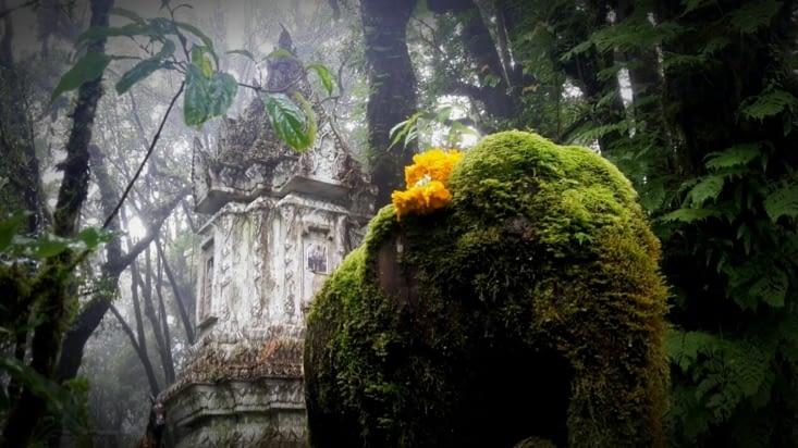 Au sommet du Doi Ithanon (Thaïlande)