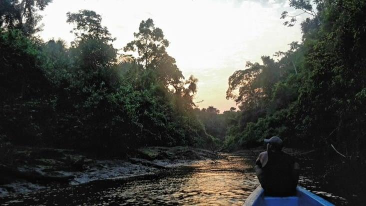 Excursion dans la réserve amazonienne de Cuyabeno (Equateur)