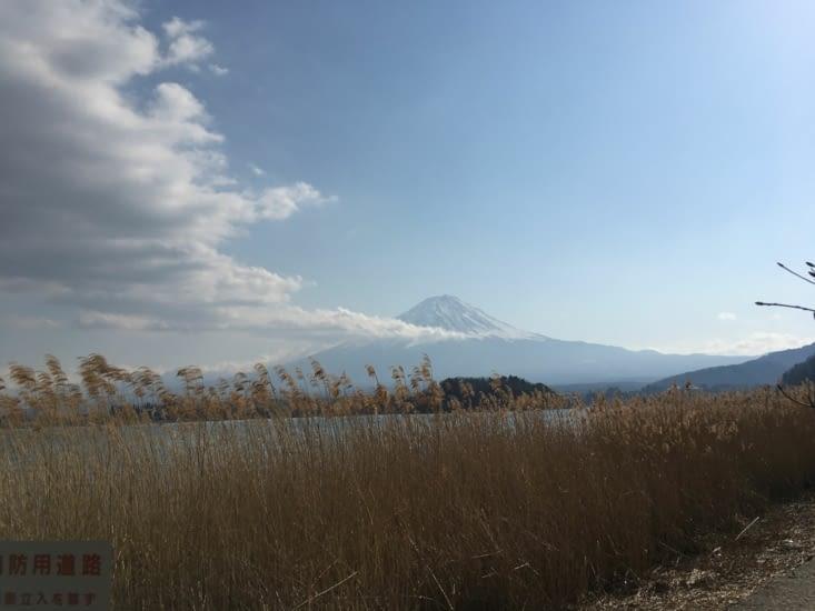 Le fameux mont Fuji! Complètement enneigé, il est fermé à cette époque de l'année.