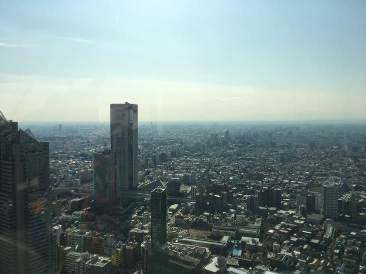 Vue de la ville à partir du siège du gouvernement métropolitain de Tokyo.