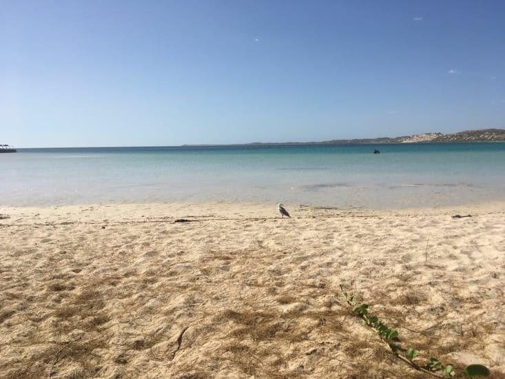 Coral Bay et l'eau turquoise