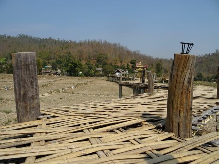Activité 2 :le bambou bridge