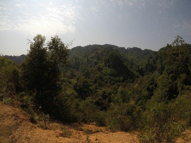 Végétation plus touffue du côté Ouest de Vang Vieng