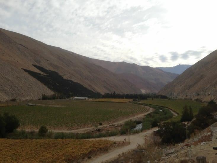 La vallée de l'Elqui, encore