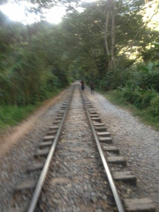 Sur les rails pour le Machu Picchu